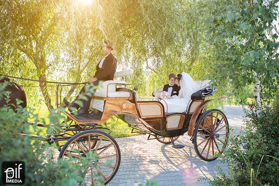 Nunta Carmen & Daniel 75