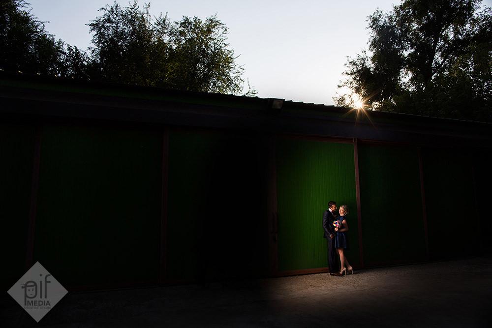 mirii intr-un spot de lumina langa un perete verde